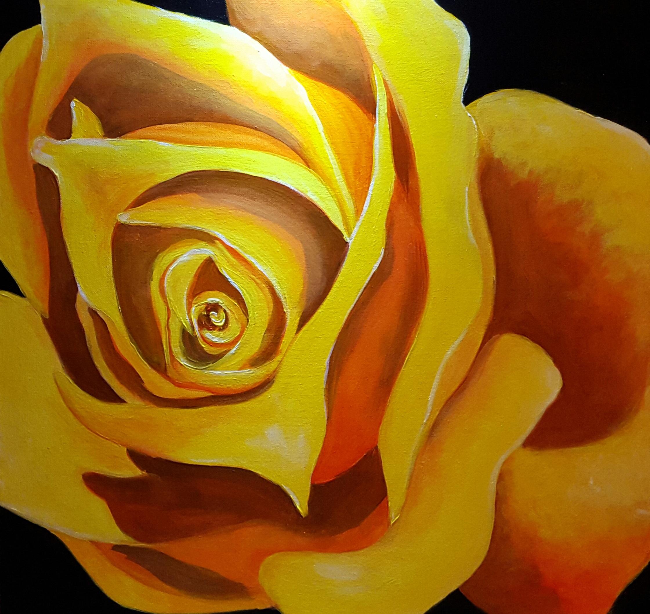 MGM Rose