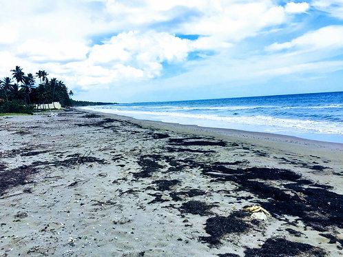 Las Canas Gaspar Hernandez Beachfront