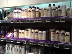 Category shelf decoration