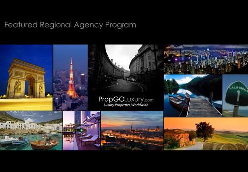 Regional_agency.png