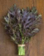 mustard greens_edited.jpg