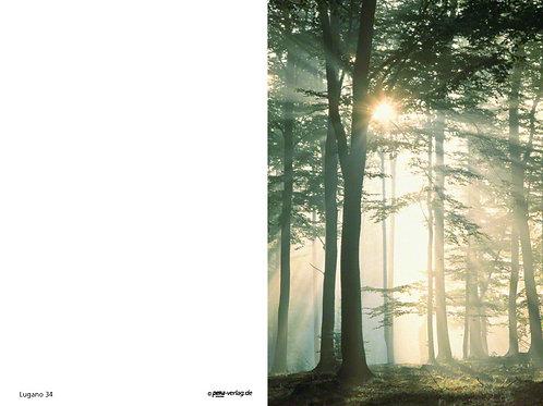 Waldstimmung-Lugano34 - ab 10 Stück inkl. Druck