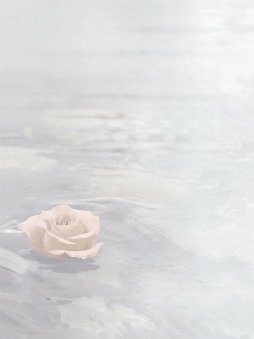 Rose im See-3131770101 - ab 10 Stück inkl. Druck