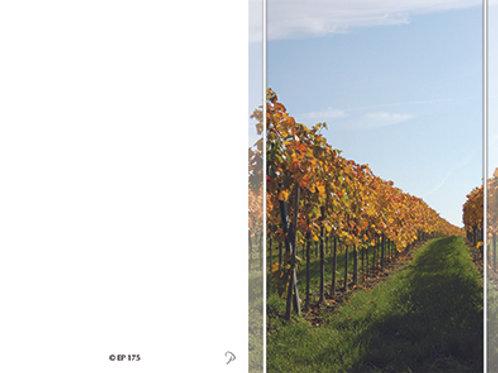 Weingarten-EP175 - ab 10 Stück inkl. Druck