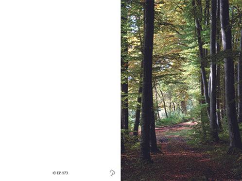 Waldweg-EP173 - ab 10 Stück inkl. Druck