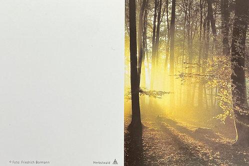 Herbstwald - ab 10 Stück inkl. Druck