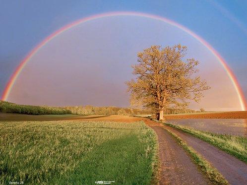 Regenbogen-Veneto28 - ab 10 Stück inkl. Druck