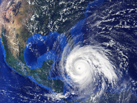 Protect Your Home from Displaced Wildlife: Hurricane Season in Central Florida