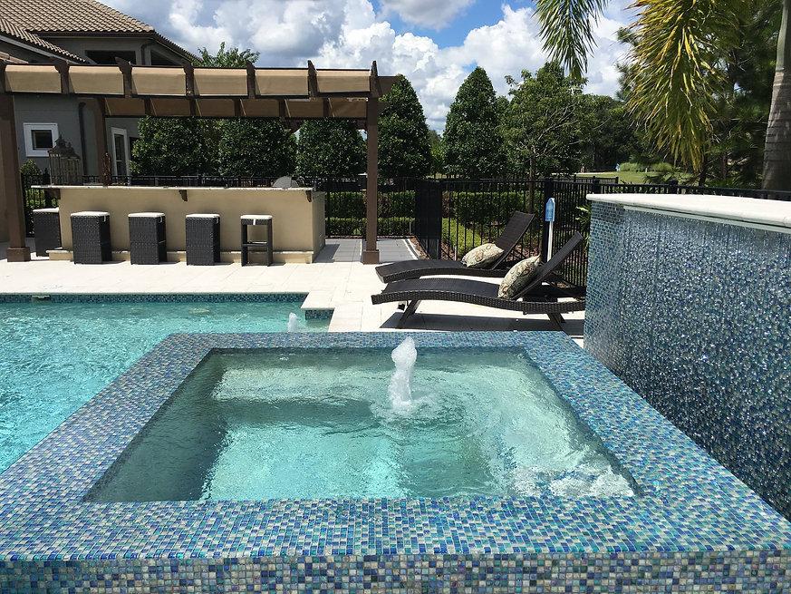 pool service mount dora