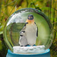 Why are we in a bubble, Mummy?