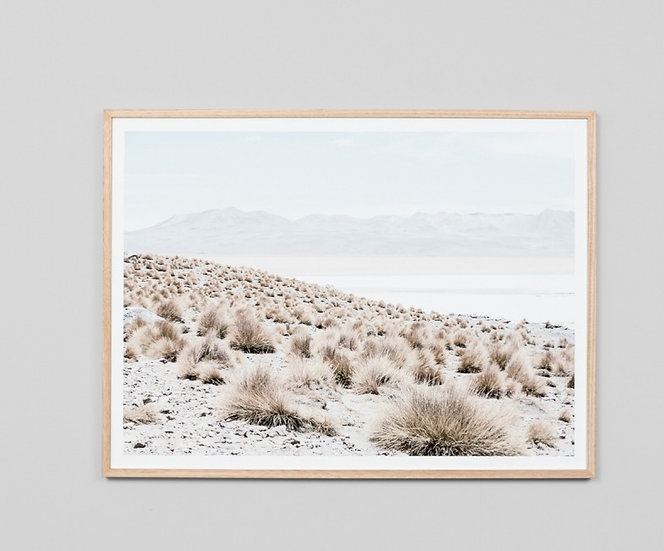 ARID SHORES GLASS FRAMED PRINT