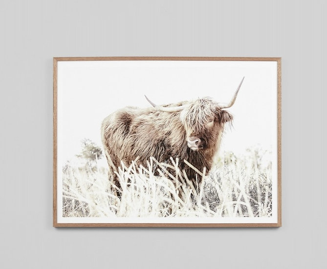 AFTERNOON GRAZE GLASS FRAMED PRINT