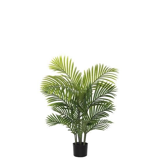 ARECA PALM TREE 90CM