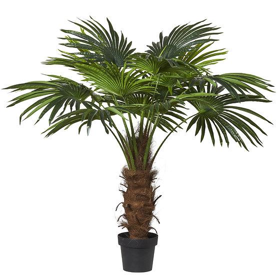 Fan Palm Green 120cm
