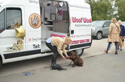 My Mobile Dog Grooming Launch