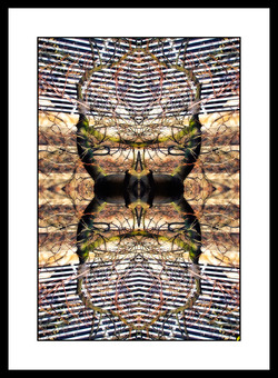 SPALTRISME HS 29.jpg