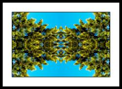 SPALTRISME GAMMA HS  17.jpg