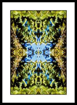 SPALTRISME GAMMA HS  38.jpg