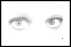 WHITE 01.jpg