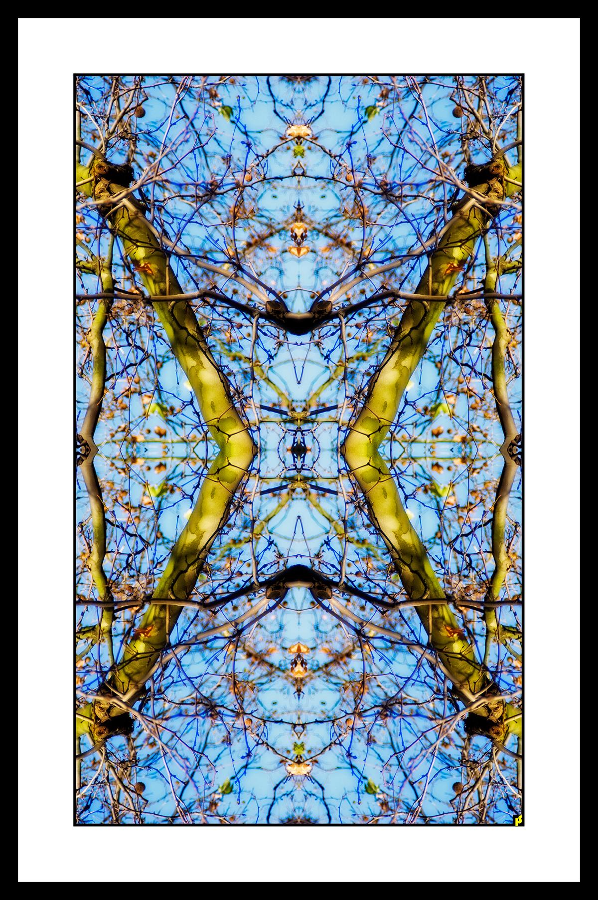 SPALTRISME GAMMA HS  25.jpg