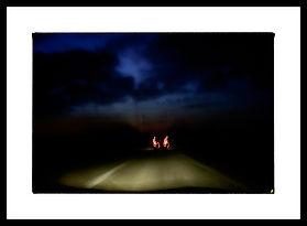PHOTOGRAPHY - LANDSCAPES
