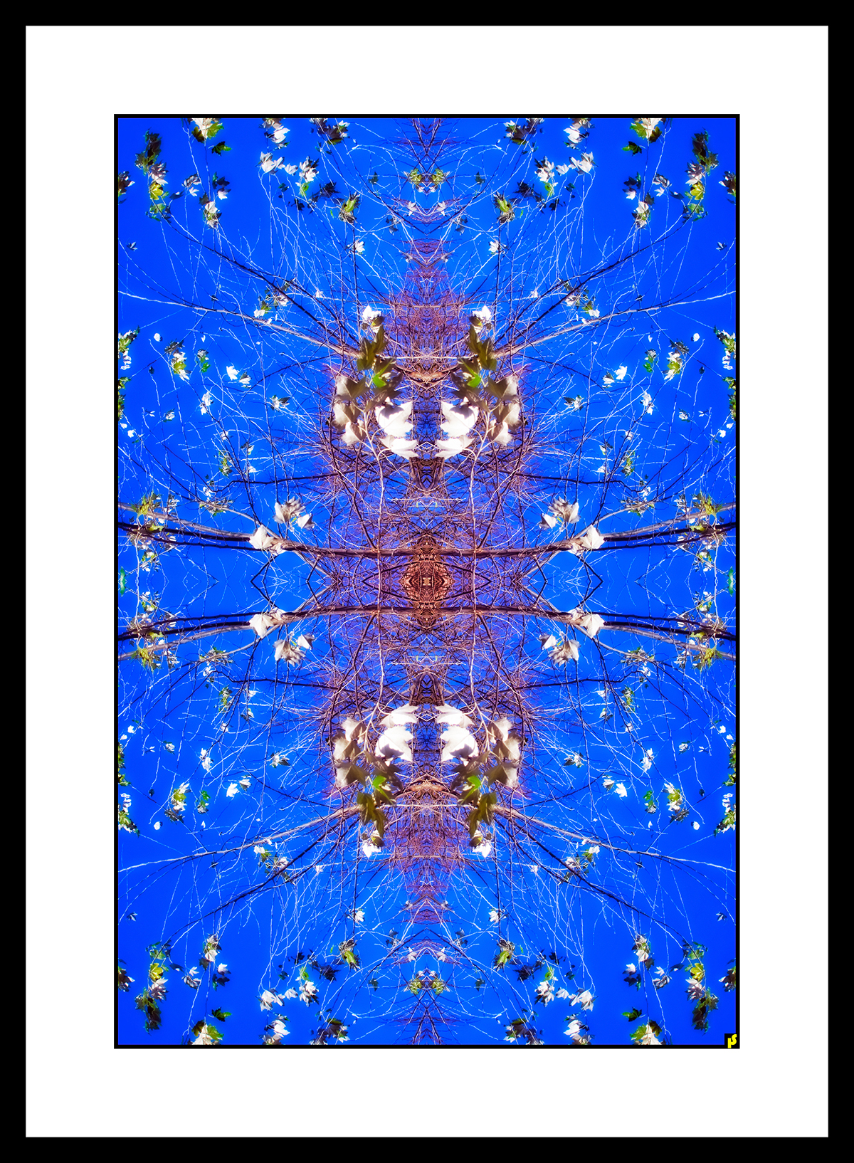 SPALTRISME GAMMA HS  23.jpg