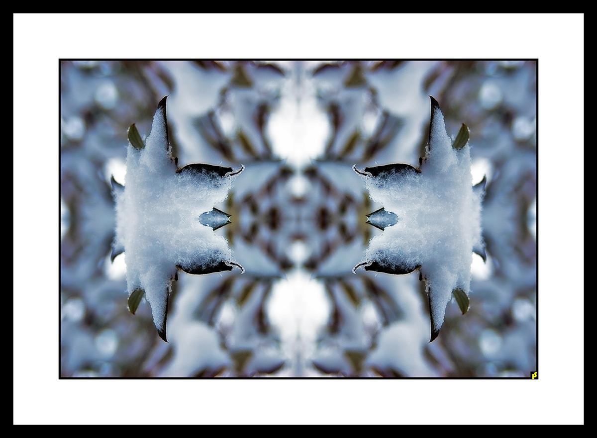 SPALTRISME GAMMA HS  31.jpg
