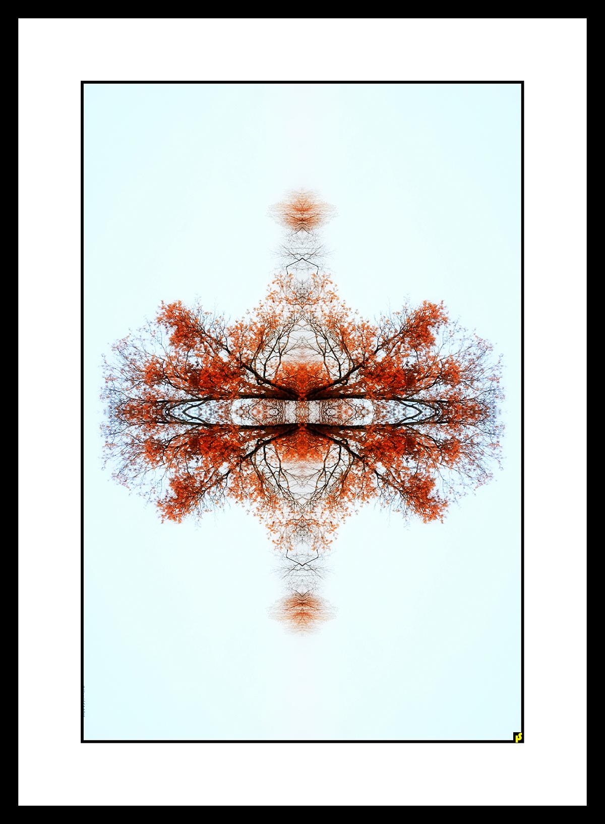 SPALTRISME HS 03.jpg