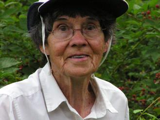Anita P. Wizov