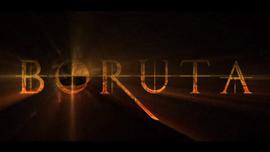 The Legend of Boruta