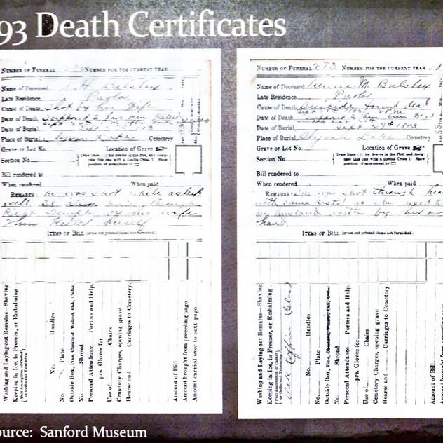 1893 Death Certificates