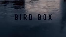 Bird Box Kill Count