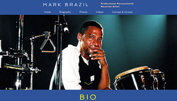 MARK BRAZIL PROFESSIONAL MUSICIAN