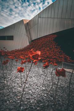 Imperial War Museum 1.jpg