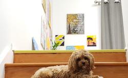 Inspirational Art Gallery