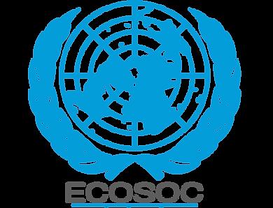 ECOSOC.png