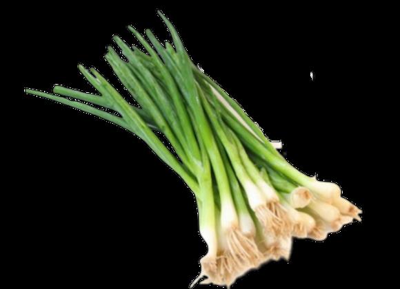 Cebollina a $0.61 x Porcion