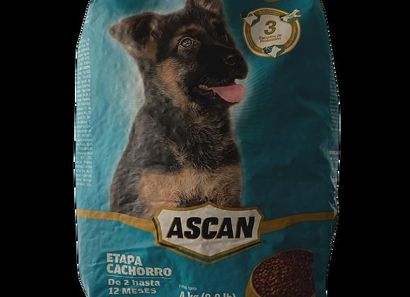Comida para Perros Cachorro 4kg Ascan