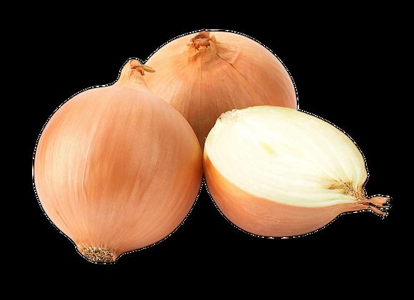 Cebolla blanca a $1.34 x Libra
