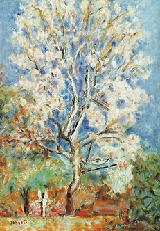 Pierre Bonnard, Almond Tree in Blossom