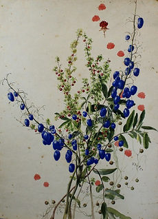 Emma Minnie Boyd, Flower Study (c. 1870s
