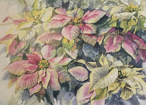 Heidi Kern, Euphorbia