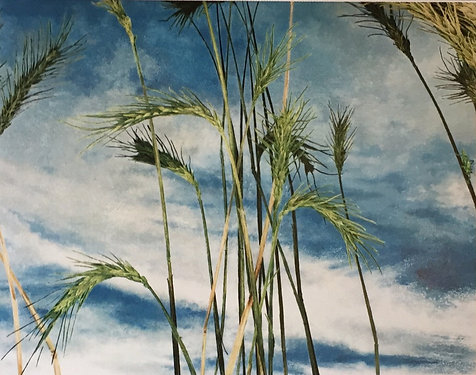 Cressida Campbell, Wheat (detail)