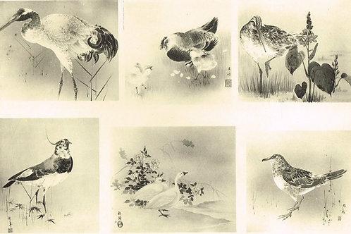 Japonais d'Art Decoratif  Plate 13