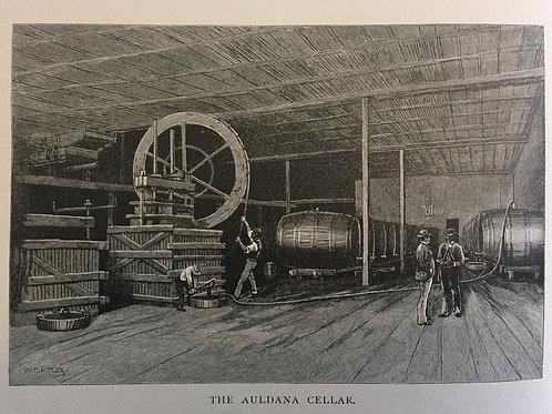 The Auldana Cellar