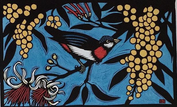 Bruce Goold, Mistletoe Bird