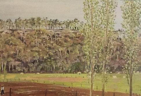Polly Boyd, View of Bundanon