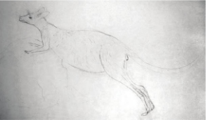 Sydney Parkinson, Sketch of a Kangaroo, 1770