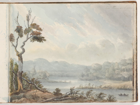 Colonial Art in the Illawarra, NSW