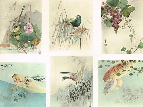 Japonais d'Art Decoratif Pochoir Plate 2